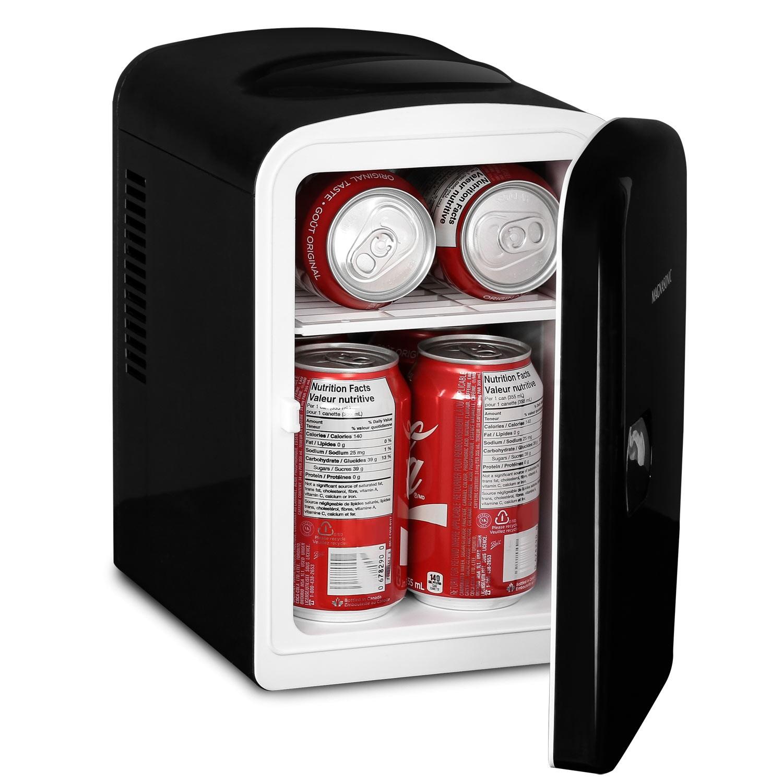 Portable 6 Can Mini Fridge Cooler & Warmer